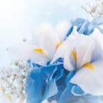 arca_news-gennaio_evento matrimonio_01